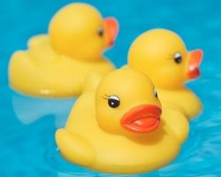 29th Great Waikoloa Rubber Duckie Race